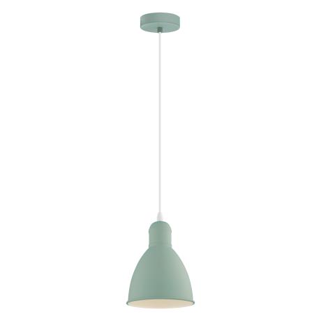Závěsné svítidlo PRIDDY-P 49094