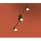 Vícebodové svítidlo stropní ONA