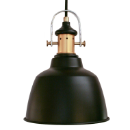 Stropní závěsné svítidlo GILWELL 49693